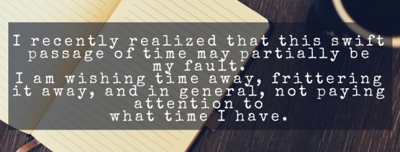 I recently realized that this swift passage of time may partially be my fault. I am wishing time away, frittering it away, and in general, not paying attention to the time I have.